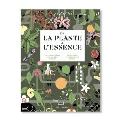 NEZ - De la plante à l'essence / From plant to essence (Français-English)
