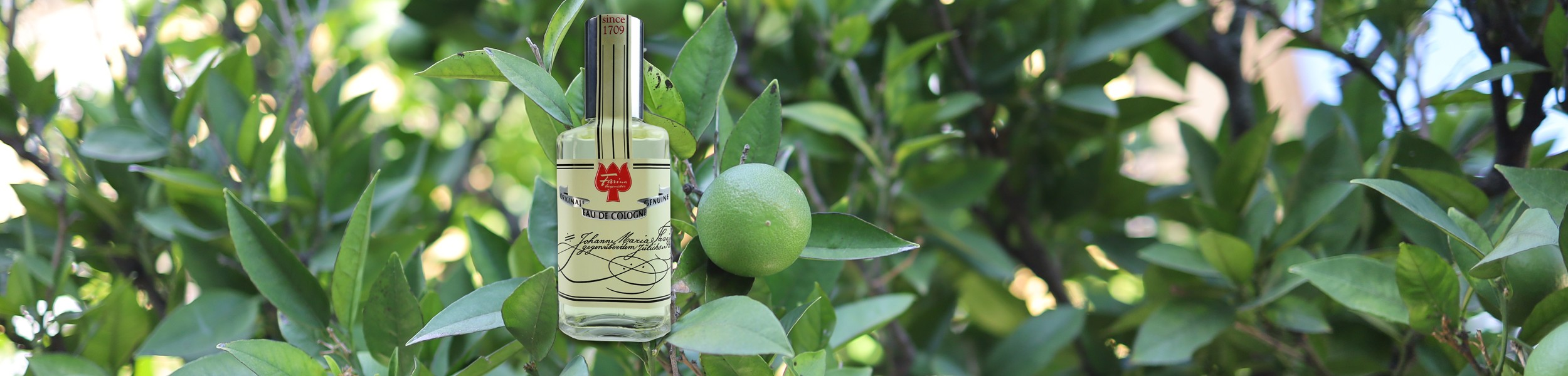 Discover the original Eau de Cologne